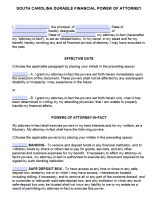 power of attorney form 4868  Free South Carolina Power Of Attorney Forms | PDF Templates